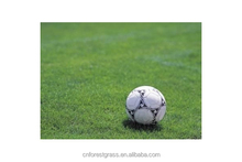 Smooth green artificial grass for soccer pitch
