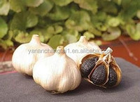 GMP certificated manufacturer supply competitive price organic high purity Black Garlic extract