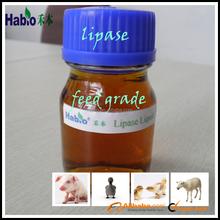 Hot!!!!digestive enzymes/feed grade lipase