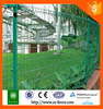 Anping shunxing double wire fence/ garden fence