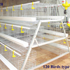 Chicken Wire Cage For Chicken Farm