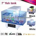 el mini tanque de peces de acuario relucir