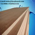 contrachapado marino piso de madera laminada contenedor