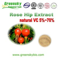 Rose Hip Extract 30% Polyphenols, 20% Flavone High Content VC,Antioxidant Flavonoids For Knee Or Hip Osteoarthritis