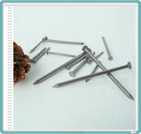 iron nail cheap price /wire nail in China