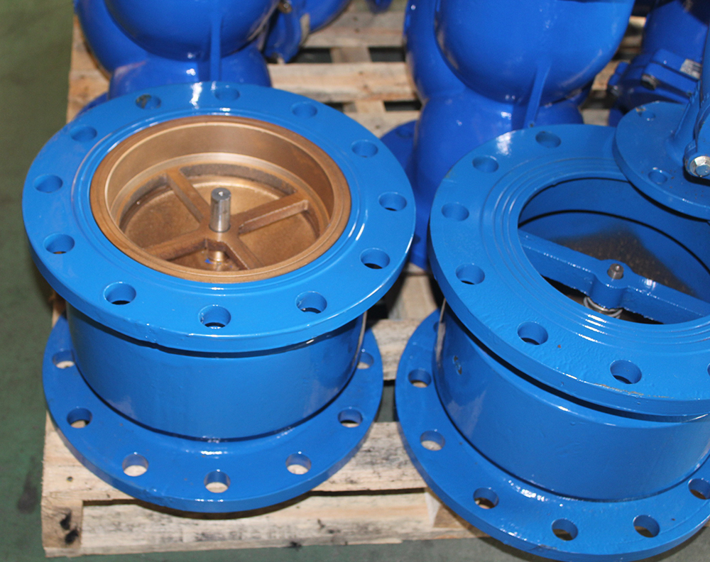 Non-slam Check Valve with spring noise emimination