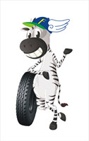 CENEW motorcycle tire scooter Tire, Tricycle Tyre