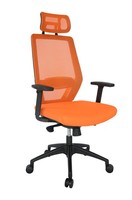 Modern Adjustable Office Chair with Arms MeshChair-531LG-BK