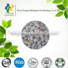 100% Natural White Kidney Bean Extract powder.high quality White Kidney Bean Extract,Phaseolin