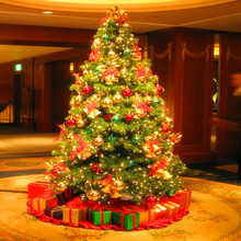 Wholesale Alibaba Best Selling Solar Powered Christmas Tree