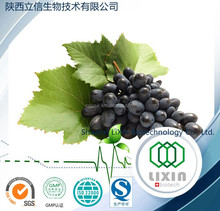 95% high quality pure nature grape seed extract