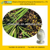 GMP Certified Factory Supply Saw Palmetto Extract Powder