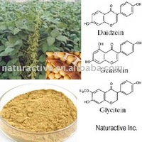 The Soy Isoflavones of Soybean Extract