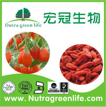 new arrival organic dried wolfberry goji berry fruit