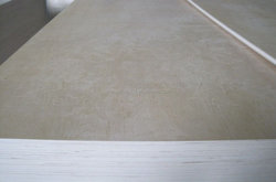 Best price Marine Plywood / Film Faced Plywood / Construction Materials in linqing