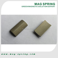 SM-24A Strong SmCo Magnet for Motor