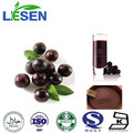 La planta extracy 100% soluble en agua de la fruta acai berry en polvo berryjuice acai en polvo