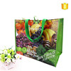 Fashion style colorful eco-friendly recycled non woven shopping bag