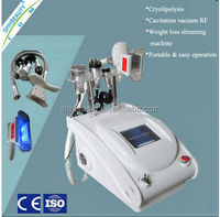 Newest good sale mini portable cryolipolysis machine for weight loss