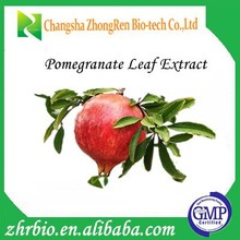 High Quality Pomegranate Leaf Extract Punicalagin 20%-40% Manufacturer