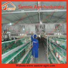 cina imprese ingrosso recinzione per pollaio