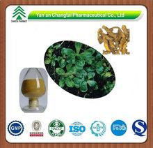 GMP Supplier Pure Natural Golden Seal Root P.E.