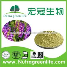 Health food New product free sample raw material Coleus Forskohlii Bark Extract / Coleus Forskohlii Extract / Forskolin