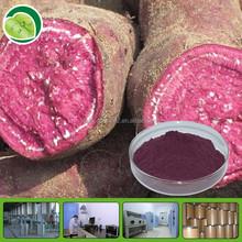 natural anthocyanin color powder purple sweet potato