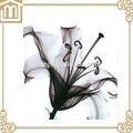 Modern art decoración del hogar flor de lirio blanco pinturas al óleo lienzo