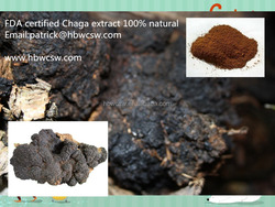 100% natural chaga extract FDA certified factory