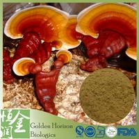 Chinese Medicine Polysaccharides 70% HPLC Ganoderma Lucidum Extract