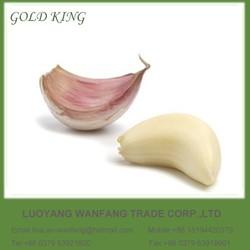Fresh Red and White Natural Wholesale Garlic Price