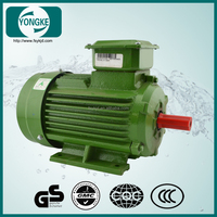 Hot selling popular 2Cr13 spindle asynchronization 20kw electric motor
