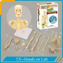 educational plastic diy science toy for children