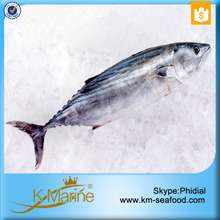 Tuna for dried fish
