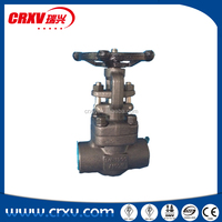 API 602 Industrial Forged Steel Gate Valve