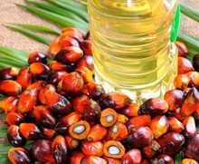 Palm Oil (Crude & RBD Palm (Olein)