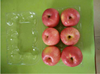 Hot sale plastic blister packaging disposable fruit tray packaging