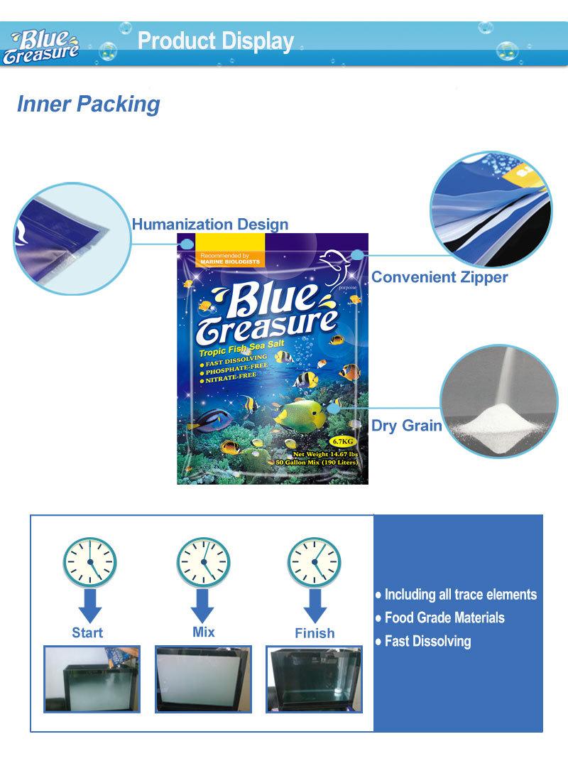 Blue Treasure Wholesale Live Tropical Fish Buy Tropical