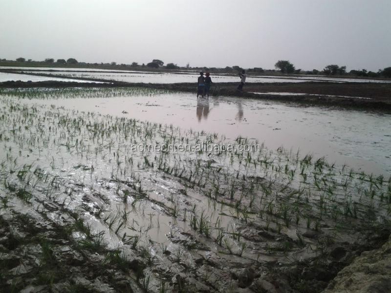 2014 HOT China ACME manual rice transplanter price