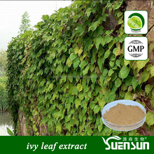 GMP Factory Supply High Quality ivy leaf extract Ivy extract