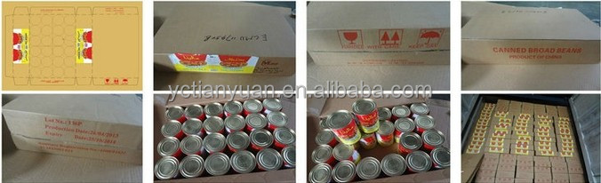 Best quality from Xinjiang Brix 28-30% concentrated CANNED TOMATO PASTE
