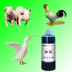 Animal extraction of traditional chinese medicine Xin Kang flu specific drug oral liquid