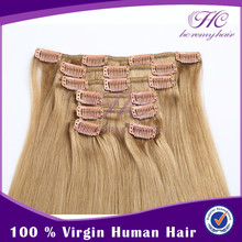 Alibaba hot sell brazilian fusion hair extensions clips in extension