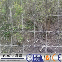 Factory hot dip galvanized deer and rabbit fencing(ISO9001,Since 1989)