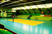 Indoor/Outdoor Plastic Sports Flooring for volleyball and Badminton Court