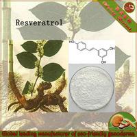 Polygonum cuspidatum extract powder