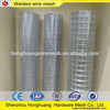 High Quality Bird Cage Galvanized Wire Mesh 16 Gauge Wire Mesh 1X2 Welded Wire Mesh Panel