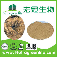 Manufacture supply high quality radix angelicae pubescentis extract/p.e.