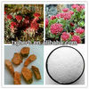 ISO Manufacture supply hight quality Red Clover Extract with 98% Biochanin A,Biochanin